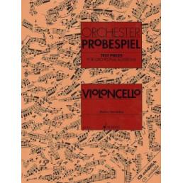 Orchester Probespiel Violoncello