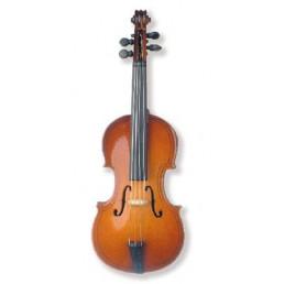 Iman violoncel